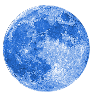 Blue Moon Tax Service